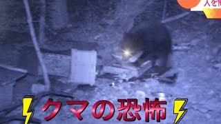 説明 クマの恐怖 関連・おすすめ動画 角刈りの歌 https://youtu.be/t2Ya...