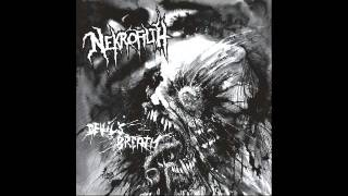 Nekrofilth - Wormskull