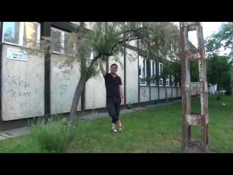 Afrikanische Tamariske Tamarix Tetrandra Youtube