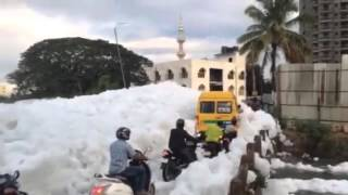White Toxic Froth From Bellandur Lake Floods Streets in Bengaluru