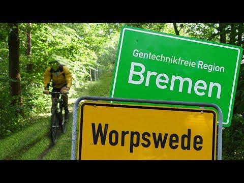 bike-ride-worpswede---bremen---dom
