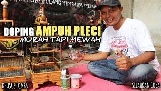 TIPS TRIK DOPING AMPUH PLECI Murah TAPI MEWAH