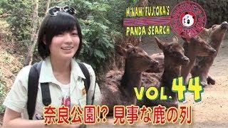 パンダ舎を後にしてパンダグッズのお店を探しつつ猿・鹿・ジャガーなど...