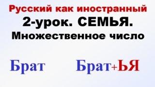 рКИ Семья-2. Единственное и множественное число. Русский язык для начинающих