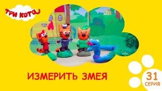Три кота - Измерить змею| Выпуск №31|Развивающее видео для детей