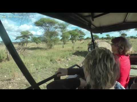 Safari Tansania - Tarangire Nationalpark