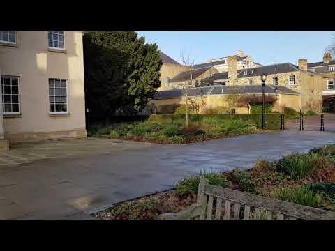 Downing College Cambridge Foxy Bingo and Lotto