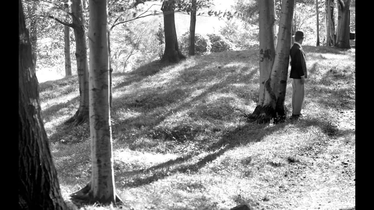 Van Morrison In The Garden Youtube