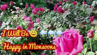 Tips To Save Your Beautiful Plants In this Monsoons, बारिश होने से पहले यह जानकारी ले लीजिए