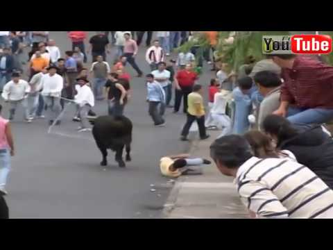 extreme bull attack compilation 2017