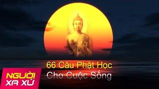Phim Hoat Hinh | 66 Câu Phật Học Làm Chấn Động Thiền Ngữ Thế Giới | 66 Cau Phat Hoc Lam Chan Dong Thien Ngu The Gioi