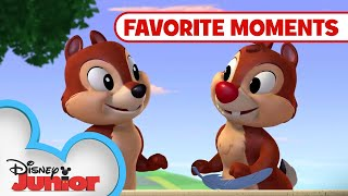 Chip N' Dale's Nutty Tales Compilation! Part 2 | Disney Junior