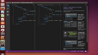 Microsoft Visual Studio Code in Ubuntu Linux