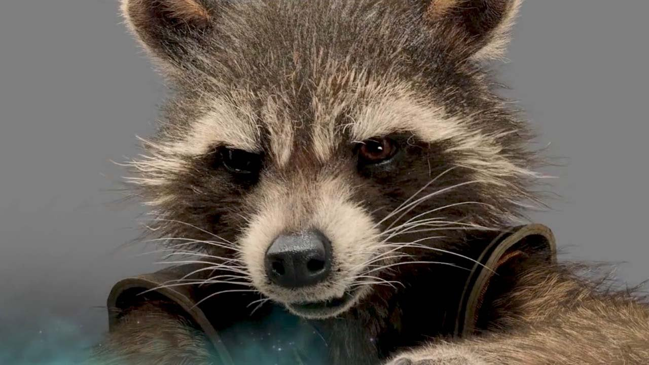 how to draw rocket from guardians of the galaxy