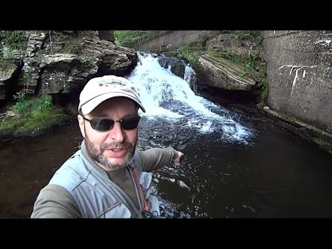 Catskill Fishing, Neversink, Little BeaverKill, Map Below