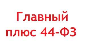 Главный плюс 44-ФЗ
