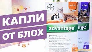 Bayer Advantage Капли от блох для кошек и кроликов
