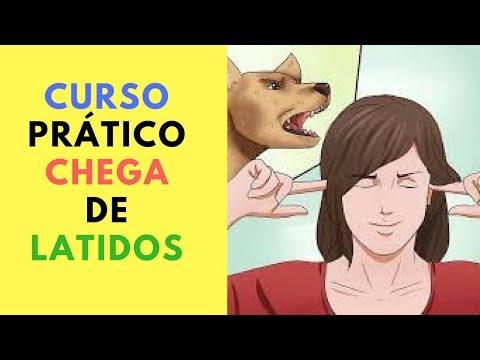 CHEGA DE LATIDOS - COMO PARAR DE LATIR PASSO A PASSO AGORA