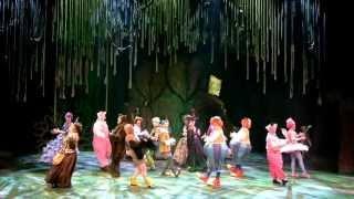 http://www.shrekmusikaali.fi  Shrektaakkeli on saapunut Jyväskylään!  Musikaalikomedia Shrek tarjoaa perinteisten musikaalien ystäville uudenlaista ja mukaansatempaavaa hulluttelua ja romanttisen rakkaustarinan vailla vertaa. Kauniit balladit, iloinen ja rytminen shrek'n'roll siivittävät menoa, humoristisissa tanssinumeroissa otetaan ilo irti elämästä.  Maailmaa valloittaneen Shrek-musikaalikomedian Suomen kantaesitys nähtiin Jyväskylän kaupunginteatterissa 7.9.2013. Shrek on hyvän mielen musikaali ja todellinen visuaalinen ilotulitus -- unohtamatta teemoja erilaisuuden hyväksymisestä, raja-aitoja rikkovasta ystävyydestä ja aidosta rakkaudesta. Musikaalin päärooleissa vierailevat Otto Kanerva ja Maria Lund.  Musikaali Shrek puolustaa ystävyyttä, erilaisuuden hyväksymistä ja todellista rakkautta. Kaikki me olemme oman elämämme sankareita, vaikka muiden mielestä näyttäisimme hiukan kummallisilta.  Ikäsuositus 5-6 --vuotiaista ylöspäin, ei ylärajaa.  Teksti ja laulujen sanat David Lindsay-Abaire Musiikki Jeanine Tesori  Tekijänoikeuksia valvoo Josef Weinberger Ltd. Lontoo, joka edustaa Music Theatre International New Yorkia ja DreamWorks Theatricalsia.  Perustuu DreamWorksin animaatioelokuvaan ja William Steigin kirjaan.  Broadwayn alkuperäisesityksen tuottivat DreamWorks Theatricals ja Neal Street Productions. Alkuperäisesityksen ohjasi Jason Moore.  Ohjaus ja suomennos Kari Arffman Kapellimestari Jyrki Heikkilä Koreografia Sari Louko (vier.) Lavastus Samuli Halla (vier.) Valosuunnittelu Tuukka Toijanniemi Puvut perustuvat Tim Hatleyn pukusuunnitteluun  Orkesteri Jyrki Heikkilä (kapellimestari) Heta Forstén / Esko Eirola  Antti Kettunen Mikko Tourunen Jani Saaranen / Mailis Ben Romdhane Juha Keskinen / Petri Lahtinen Markus Elgland / Heikki Hakkarainen Matti Ekman Matti Laukkanen / Ari Korhonen Mihai Petrescu / Pekka Törmänen Raimo Väyrynen / Jarmo Hovi June Binnie / Hannu Leppänen  Rooleissa Shrek -- Otto Kanerva (vier.) Fiona -- Maria Lund (vier.) ja muissa rooleiss