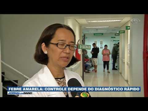 Busca por vacina da febre amarela cresce em todo país