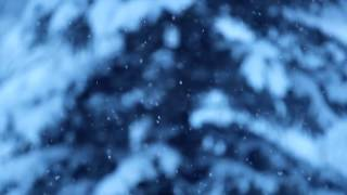 Slow Motion Snowfall