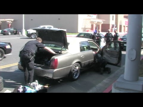 Police Catch Hit-And-Run Suspect In Modesto, California - News Story