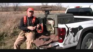 Dt Systems 1852 Beeper Training Collar Video By Pointer Supply