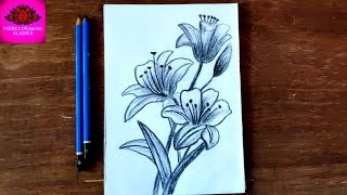 how to draw beautiful tiger lily flower with  pencil shading (easy steps)
