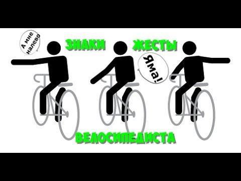 Как велосипедист подает сигнал о повороте