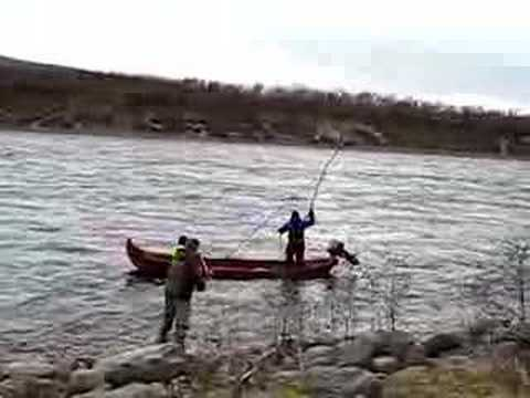 drivgarnsfiske