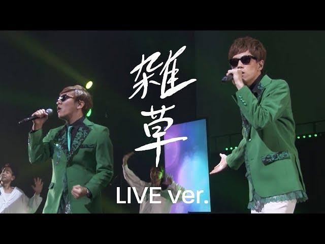 【公式】雑草 / ヒカキン & セイキン LIVE【U-FES.2017】