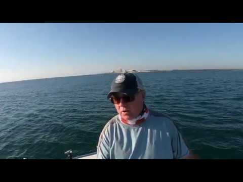 Ponce Inlet New Smyrna Beach Saltwater Fishing Report June 2020