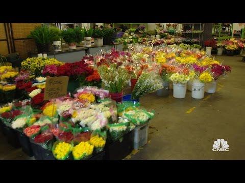Farmgirl Flowers Extended Sneak Peek