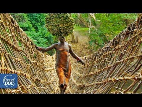 Sacred Bridges. Ivory Coast - 동영상