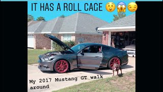 My Roll Caged 2017 Mustang GT. What's wrong with my car?!