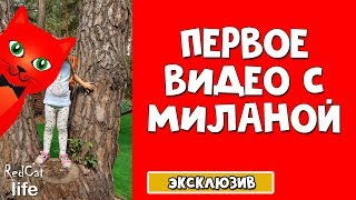 Показал лицо Red Kitty Миланы | Канал RedCat life | Подписывайтесь на новый канал с влогами Red Cat