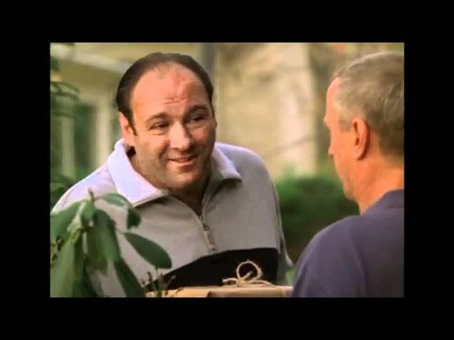 Tony Soprano's prank to his neighbor Dr  Bruce Cusamano | Have eyes