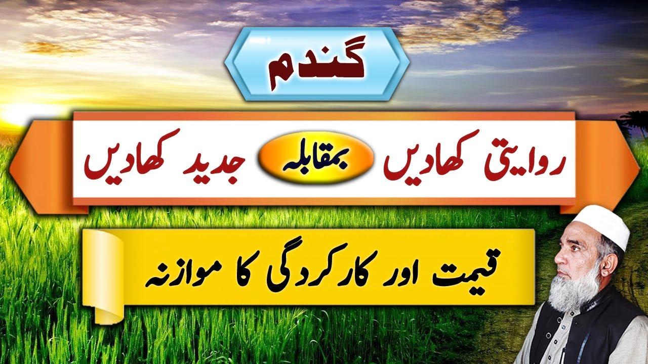 Download Convensional Vs Advanced Fertilizers   Crop Reformer