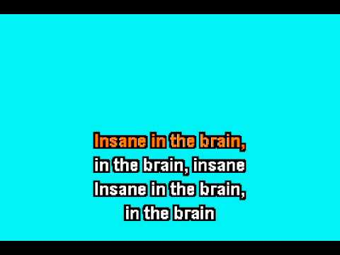 Cypress Hill - Insane In The Brain karaoke.avi