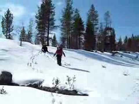 Urho Kekkonen National Park2, Finland