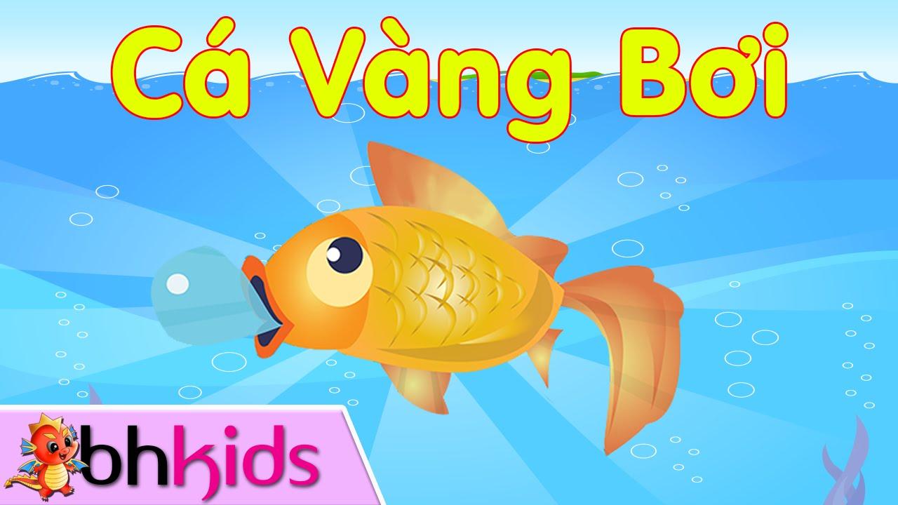 Cá Vàng Bơi – Hai Vây Xinh Xinh