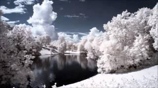 Sphingida - Springled Planet