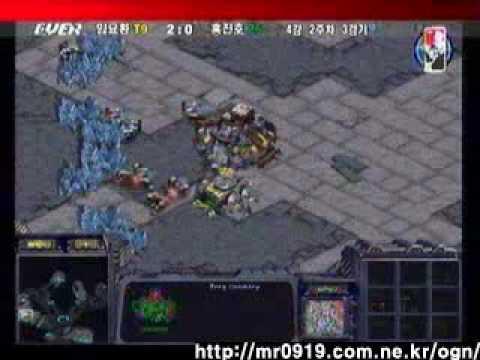 Boxer's Bunker Rush x3
