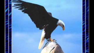 O canto da águia