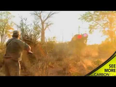 Shawn Michaels; The Heart Break Kid Charged by Elephant While Hunting
