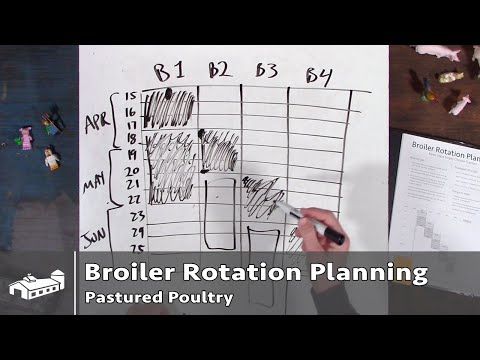 Broiler Chicken Rotation Planning - PPP#1 S1:E1