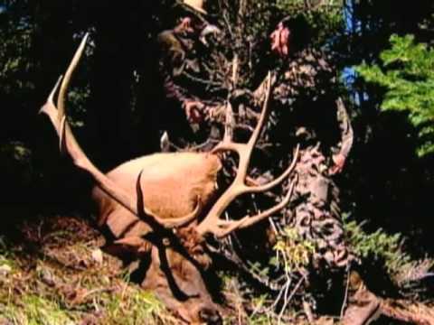 Wyoming Wildlife TV #11--Funding