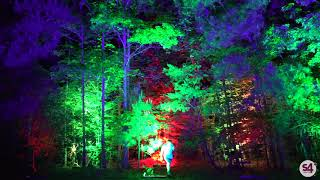 Behind The Scenes: Glowing Woodlands With S4i® Architectural Lights