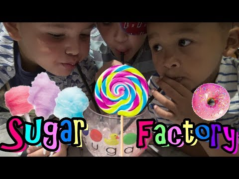 SUGAR OVERLOAD AT THE SUGAR FACTORY - FAMILY FUN KIDS PARTY