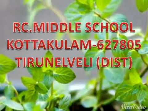 Setting up a curable herbal garden in school campus